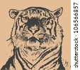 tiger head. hand drawing. engraving style. vector illustration - stock photo