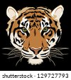 Tiger isolated on black background vector - stock photo
