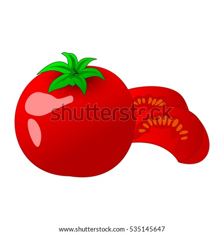 Tomato and slice isolated on white photo-realistic vector illustration.