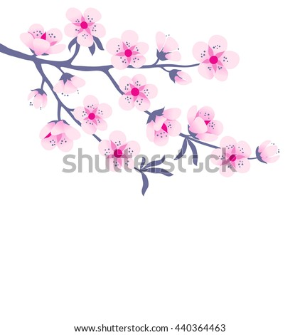 Tree branch in pink blossom