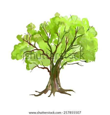 Tree vector illustration  hand drawn  painted watercolor
