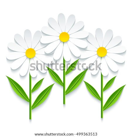 Trendy nature background with three 3d chamomile cutting paper. Stylized summer flowers isolated over white. Stylish modern floral wallpaper. Floral design elements. Vector illustration