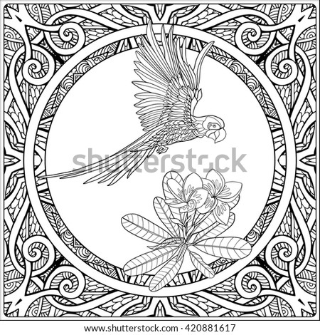 Tropical Animals And Plants On Decorative Pattern Background Outline Drawing Vector Illustration Good
