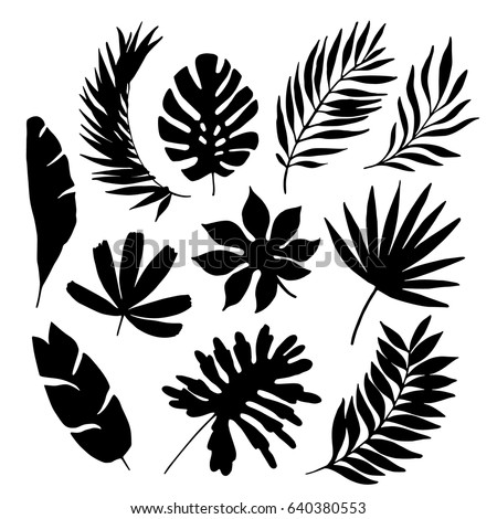 Abstract Seamless Pattern Watercolor Tropical Leaves 568143559