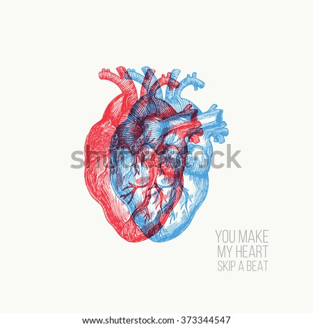 Valentines day card. Anatomical heart. Vector illustration