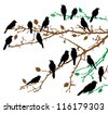 vector birds sitting on the branches - stock vector