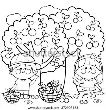 Children Picking Apples Coloring