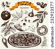 Vector collection of ink hand drawn pizza illustration isolated on white. Vintage Pizza sketch set - stock vector