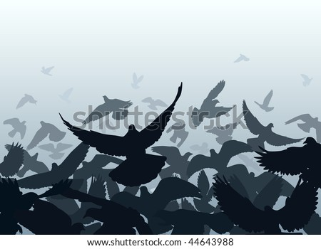 Vector design of a flock of pigeons taking off with each bird as a separate object