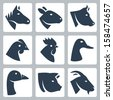 Vector domesticated animals icons set: horse, sheep, cow, chicken, rooster, duck, goose, pig, goat - stock photo