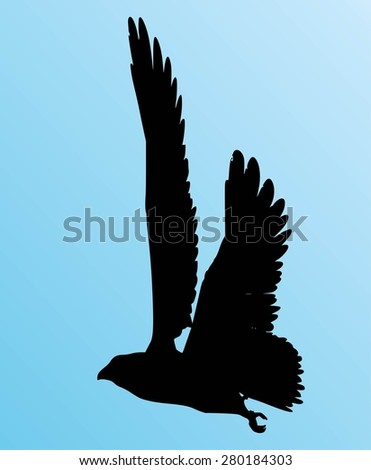 Silhouetted Crow Sits On Power Line Stock Photo 1441520 ...