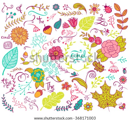 Vector floral design  elements in doodle style, hand-drawn flowers and insects and plants