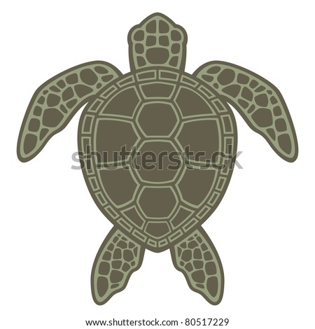Turtle Stock Photos, Turtle Stock Photography, Turtle Stock Images ...