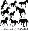 vector horse set - stock vector