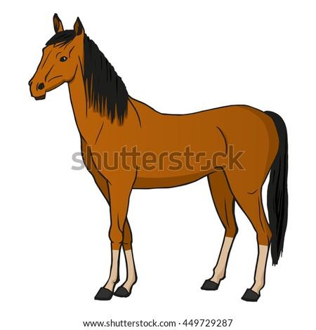 Horse Cartoon Illustration Stock Vector 419476699 ...