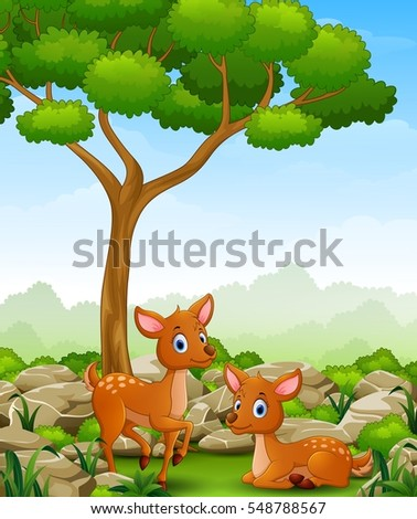 Vector illustration of Cartoon two deer in the jungle