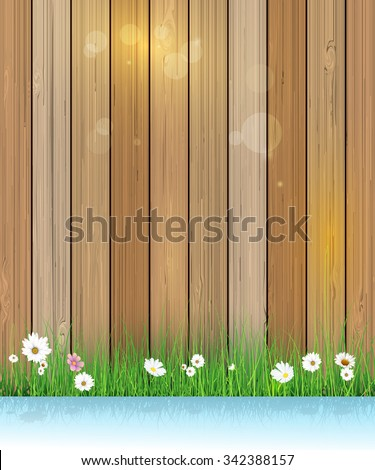 Vector illustration Spring nature background. Green grass and leaf plant, White Gerbera, Daisy flowers and sunlight over wood fence with shadow over water. Blank space for content or your design