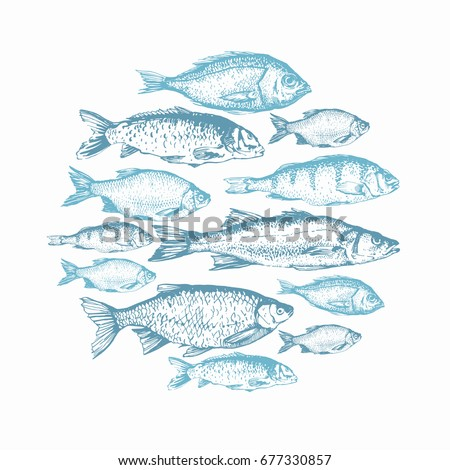 Vector flyer linear silhouettes underwater fish stock for White river fish market menu