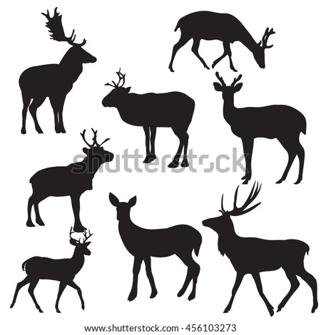 vector, isolated, silhouette deer on white background, set