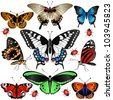 Vector of Collection of many butterflies and ladybugs - stock vector