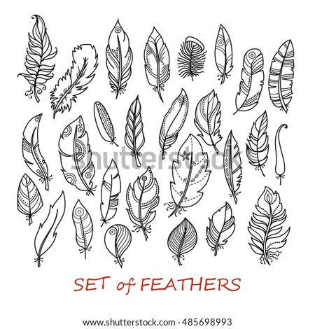 Vector Ornate Set of Stylized and Abstract Feathers. Elements for Design and Coloring Pages.