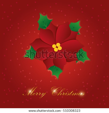 Vector paper graphic of Christmas flower.