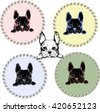 Vector pattern with French Bulldog. Hand drawing illustration. Logo and tags design.
