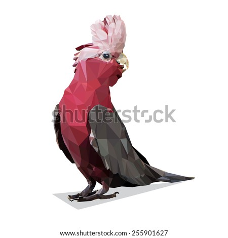 Vector Polygonal Galah Rose Breasted Cockatoo