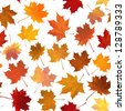 Vector seamless background: autumn maple leaves on white. - stock vector