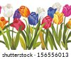 Vector seamless pattern with colored tulips - stock vector