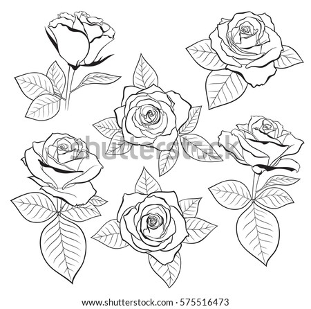 130182245453433231 besides Stop Mobbing Word Cloud In Shape Of Open 22431701 moreover Vector Set Detailed Isolated Outline Rose 576862396 further Yeni Yil Coraplari Ve Kalibi 4821 moreover Template Flower. on pattern templates