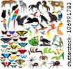 Vector Set of Different Animals - stock vector