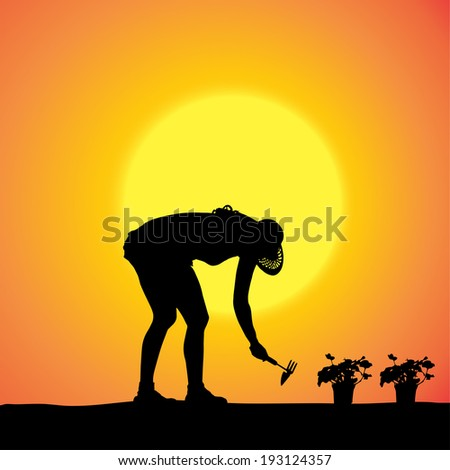 Vector silhouette of a gardener in the garden at sunset.