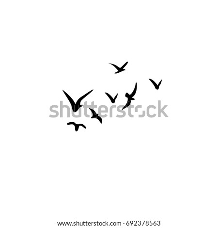Vector Silhouettes Flock Birds Crows Swans 553351153