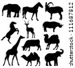 vector silhouettes of elephant, horse, goat, antelope, giraffe, rhinoceros, camel and cow - stock vector