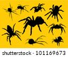 vector  spiders silhouette - stock vector
