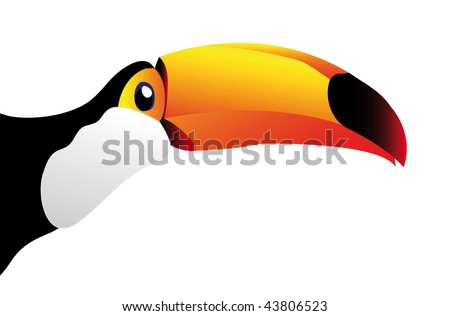 vector toucan isolated on white background - you can cut this image and use it for your images