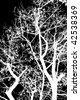 Vector Tree background - stock vector