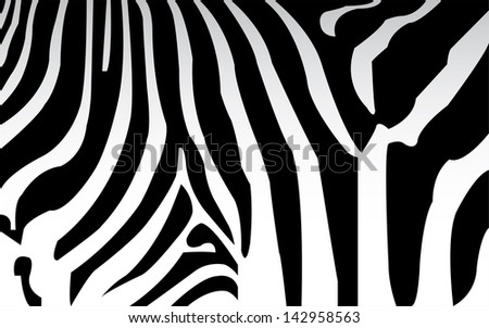 vector - zebra texture Black and White