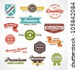 Vintage labels and ribbon retro style set. Vector design elements - stock vector
