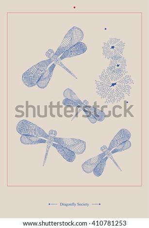 vintage style entomology poster. dragonfly decoration poster