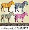 Vintage Zebra collection -  retro color vector set - stock vector