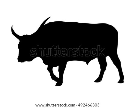 Walking Bull Silhouette on White Background. Isolated vector illustration, animal themed.