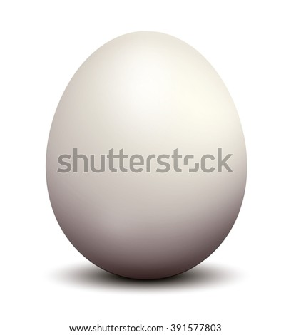 White chicken egg. Vector Illustration.