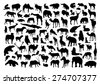 Wild animals set - stock vector