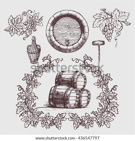 Wine and wine making vintage set. Wine template design. Vector illustration. Sketch style design. Red wine, white wine. Hand drawn grapes.