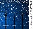 winter trees background, vector - stock vector