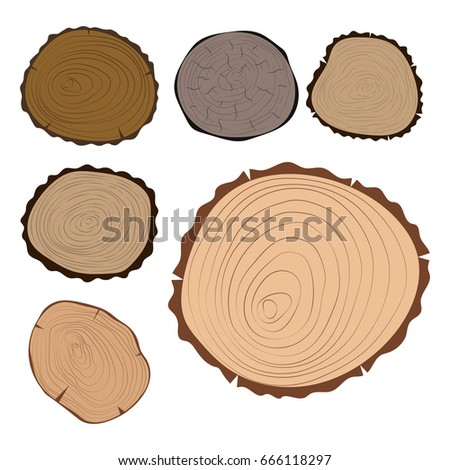 Wood slice texture set slices wood stock photo 312628886 for How to cut wood slices