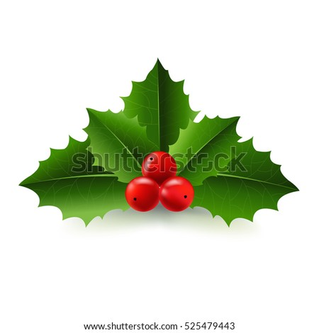 Xmas Holly Berry, With Gradient Mesh, Vector Illustration