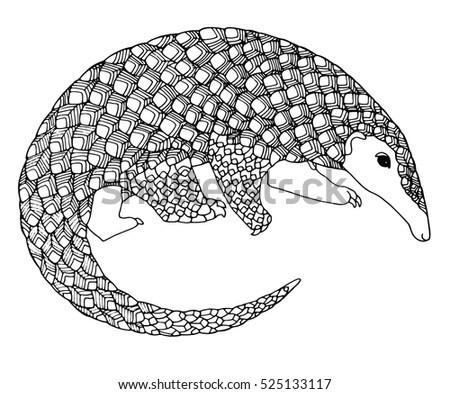 Zentangle Lizard Vector Design Adult Coloring Stock Vector